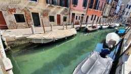 Así se ven los canales de Venecia con aguas limpias tras el confinamiento de coronavirus