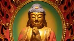 Los más grandes maestros espirituales… ¿Qué los une? ¡Descúbrelo!