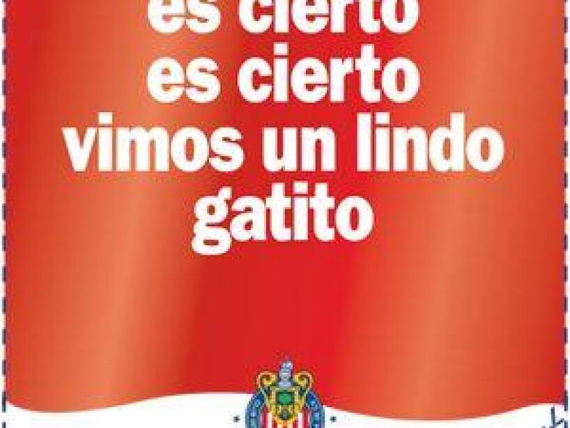 Jorge Vergara 17.jpeg
