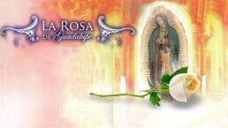 La Rosa de Guadalupe La sombra de un error
