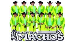Banda Machos y la quebradita, ¿precursores del reggaetón?