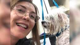 'Quiero ser una buena peluquera': Laura Flores abre su propia estética canina