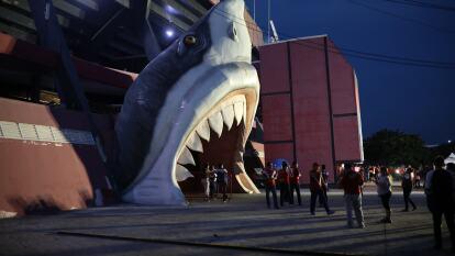 Tiburones Rojos se presentó en casa en el Apertura 2019
