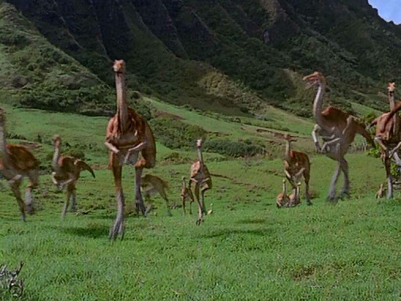 Gallimimus (Jurassic Park 1): dinosaurio terópodo ornitomímido, vivió hace 83 y 65 millones de años en Asia.