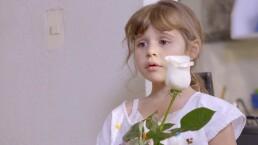 C1237: La balada de las flores