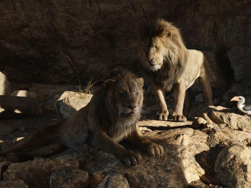 rey-leon-live-actiona-2.jpg