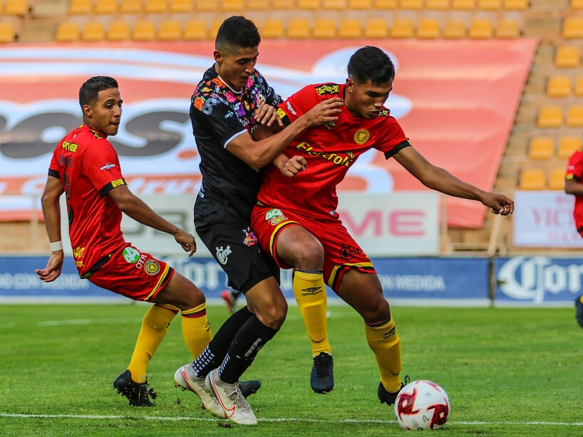 Alebrijes vs Leones Negros1.jpg