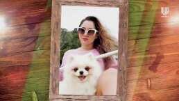 Sherlyn cuenta que su mascota Neni Boo fue un regalo sorpresa de un galán