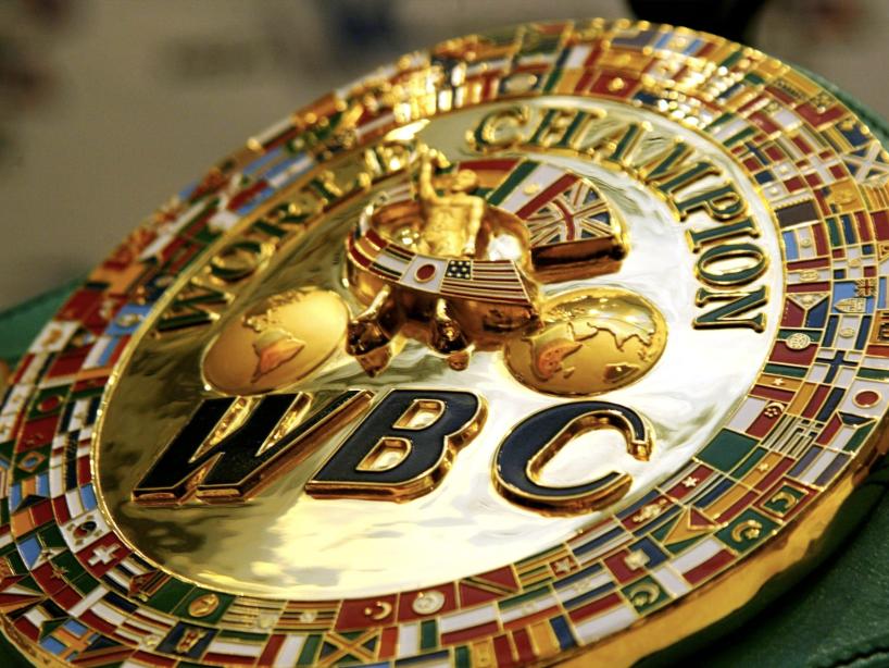 consejo mundial del boxeo.png