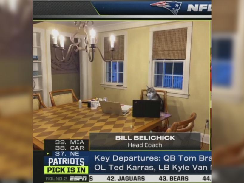 Patriots, Belichick y Nike, 2.png