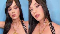 Katy Perry juega con los filtros en su celular y se hace unos 'arreglitos' en la nariz
