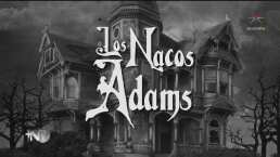 Los nacos Adams: Los deseos de Torticia