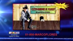 Más Noche: Conoce a los exterminadores de plagas de Marco Flores