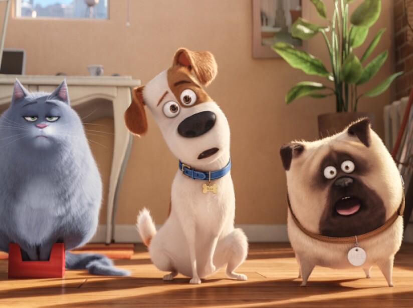 Film Title: The Secret Life of Pets