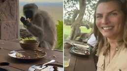Montserrat Oliver y su hermana fueron víctimas de 'robo'; un mono les quitó su comida