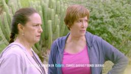 Esta semana: ¡Los celos invadirán a la familia Córcega!