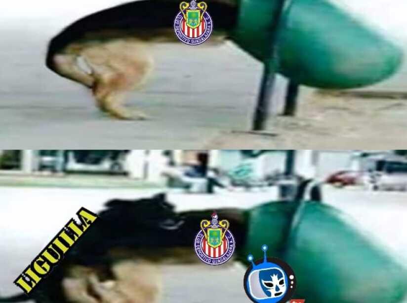 memes 37.jpg