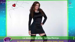 LA TELARAÑA DEL AMOR: ¡Conoce a los amores de Galilea Montijo!