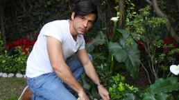 """Capítulo 33: Envidia y proyectos verdes en """"A donde va Vicente, va toda la gente"""""""