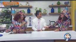 ¡Están de regreso!: 'La Jitomata' y 'La Perejila' llegan corregidos y aumentados a Hoy