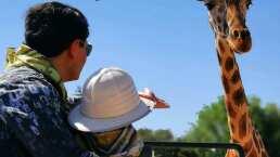 """Hijo de Ninel Conde sale de viaje con su papá Giovanni Medina: """"Mi persona favorita"""""""
