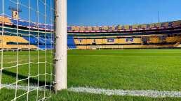 Sinergia Deportiva y UANL preparan renovación por Tigres