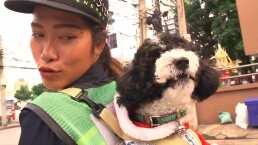 Esta barrendera se hizo viral por llevar a su adorable perrito al trabajo