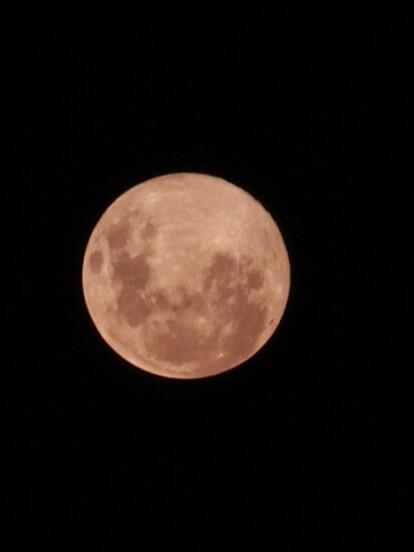 La luna llena de abril, también conocida como la luna rosa, es la más cercana del año en Buenos Aires, Argentina, el 7 de abril de 2020.