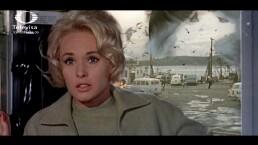 El misterio de la película 'Los pájaros' de Alfred Hitchcock