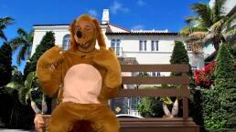 El Perro Guarumo desenmascara a los mentirosos