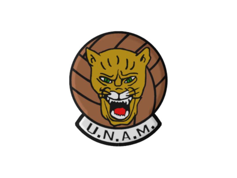 6 logo unam.png