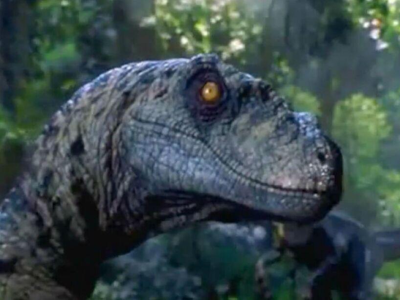 4. Parque Jurásico se filmó en una isla llamada Oahu, la misma donde J. J. Abrams grabó la serie de LOST.