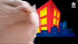 El gatito de los memes escucha la canción de Vecinos