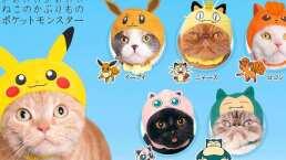 Pokémon y sus adorables gorros para gatos