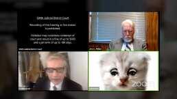 Miau, así es: Abogado entra a juicio en Zoom con filtro de gatito