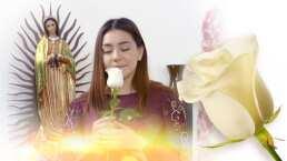 MARATÓN: Mentiras que arruinan vidas en La Rosa de Guadalupe