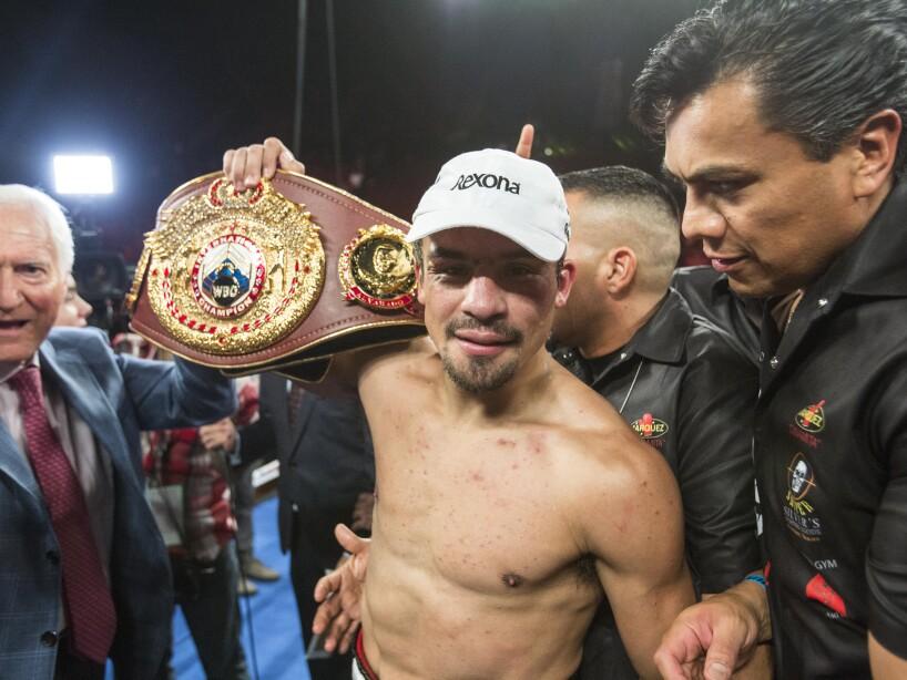 BOX Marquez Alvarado