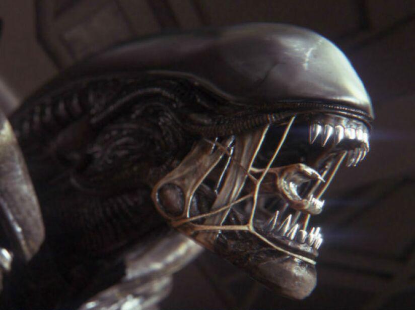alien_2c873def_f35c_9611_1937_2790c9e5cce5.jpg