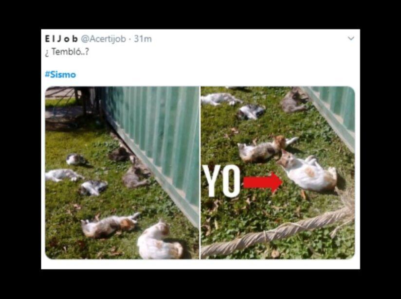 Memes de la falsa alarma del sismo de la Ciudad de México