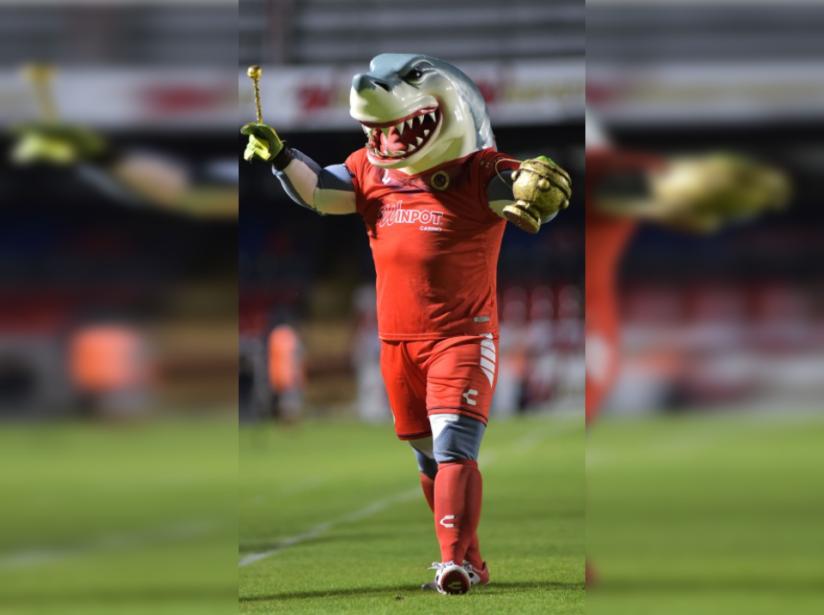 Tibujarocho se roba la atención del futbol mexicano
