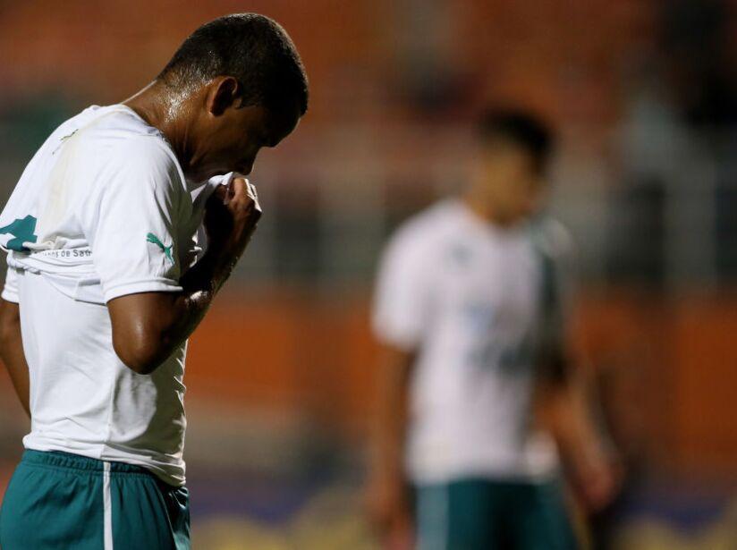 Palmeiras v Goias - Brasileirao Series A 2014